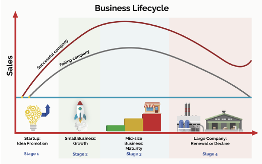 BUSINESS-LIFECYCLE